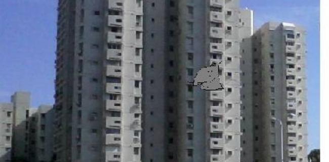 עכבר הכפר ועכבר העיר בדרכים