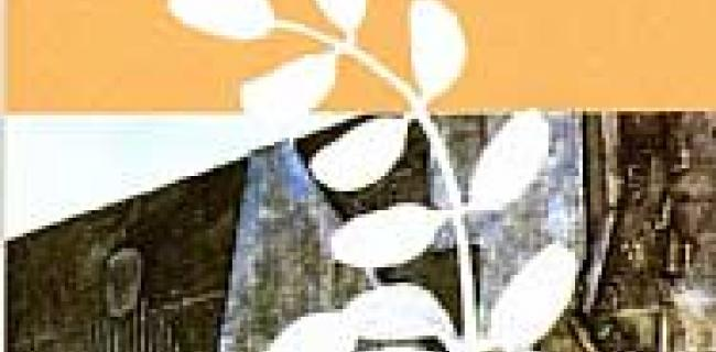 עצי האקץ