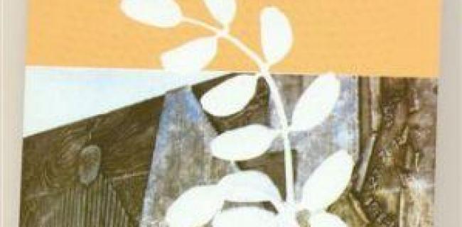 עצי האקץ / אדלינה קליין