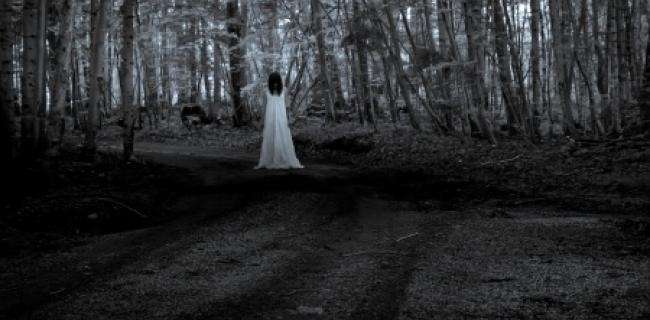 יער ההתאבדות ביפן: המקום הרדוף ביותר בעולם