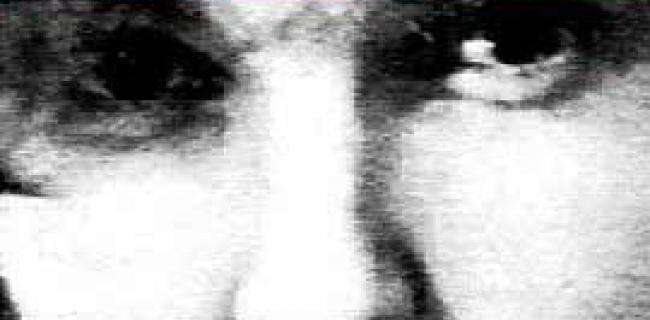 קריאת הספר מניפסט החלאה מעלה מיד כמה מני שאלות. חלקן מתחילות במלה האם ואחרות במלה מה. סולאנס הייתה מקורבת תקופת מה לחוג של אנדי וורהול והתפרסמה ב1968 בעיקר כזו שירתה ב-אנדי וורהול בסטודיו שלו בעודו מדבר בטלפון