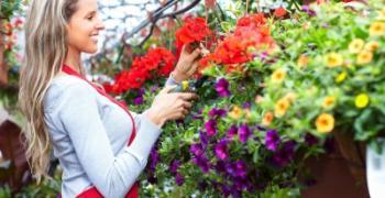 חנויות פרחים ושווקי פרחים בעולם