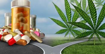 מריחואנה רפואית לטיפול בסרטן