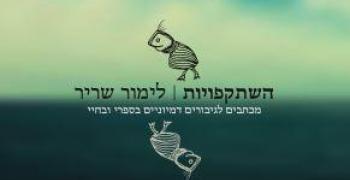 השתקפויות / לימור שריר