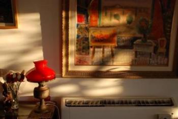 שלומית הייט: תערוכת צילום Life-Like
