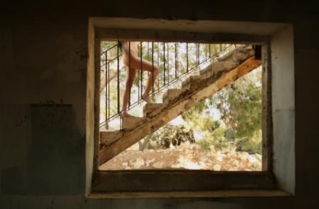 עוצמת הרכות-תערוכה שהיא טיפול אישי