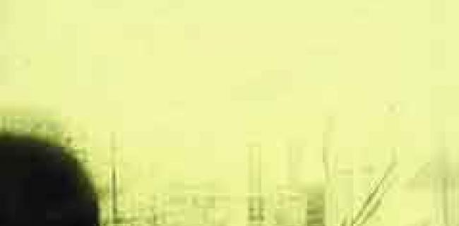 אדיר כהן / סיפורה של הבדידות
