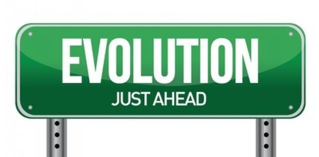 אבולוציה – שאלות ותשובות