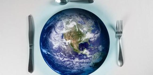 להאכיל את העולם ולהציל את כדור הארץ