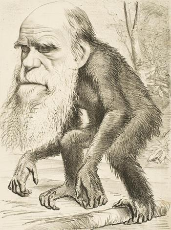 האבולוציה – מדע, או דת אתיאיסטית?