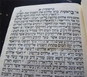 """קריאה חוייתית בפסוקי התנ""""ך"""