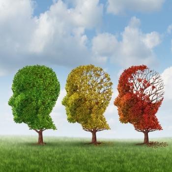 שיפור תפקודי המוח